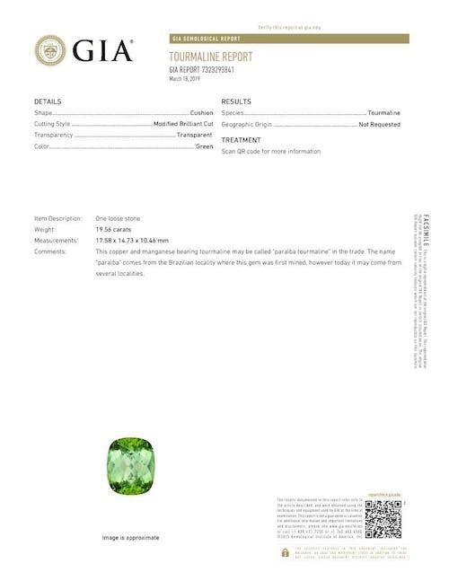7323293841.jpg?auto=format&ixlib=php 3.3 - 19.56ct Green Paraiba stone