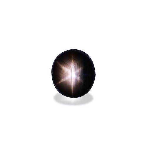 BL0034 : 27.77ct Black Star Sapphire – 17x15mm