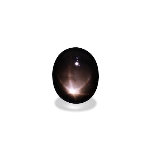 BL0037 : 17.20ct Black Star Sapphire