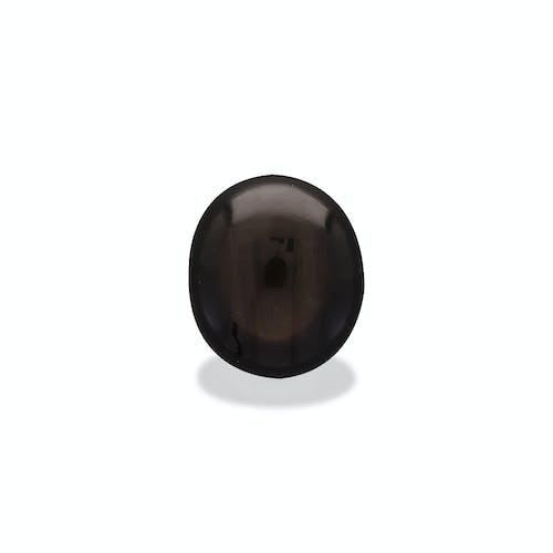 BL0044 1.jpg?auto=format&ixlib=php 3.3 - 16.03ct Black Star Sapphire stone