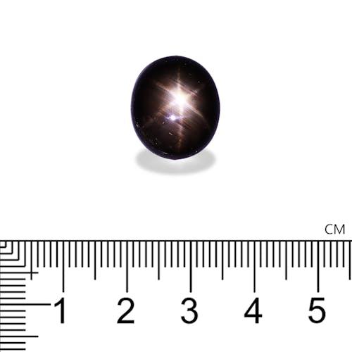 BL0047 2.jpg?auto=format&ixlib=php 3.3 - 26.11ct Black Star Sapphire stone 16x14mm