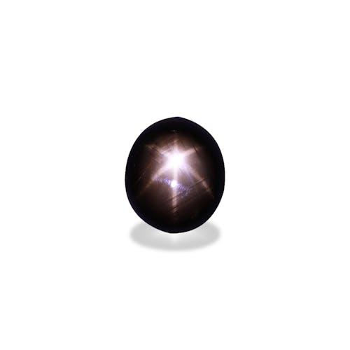 BL0048 : 22.94ct Black Star Sapphire – 17x15mm