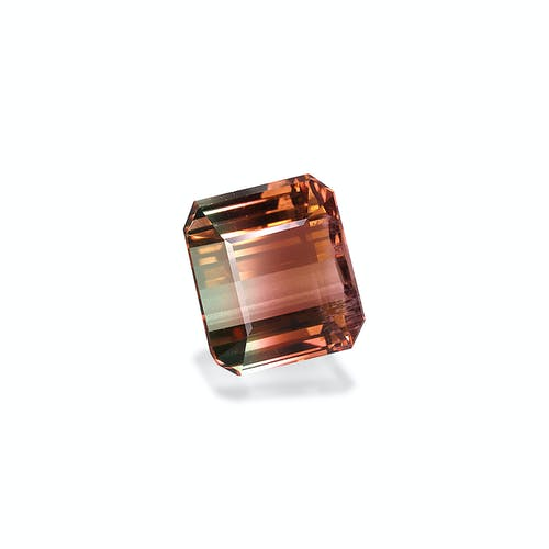 BT0080 1.jpg?auto=format&ixlib=php 3.3 - 22.48ct Bi Colour Tourmaline stone
