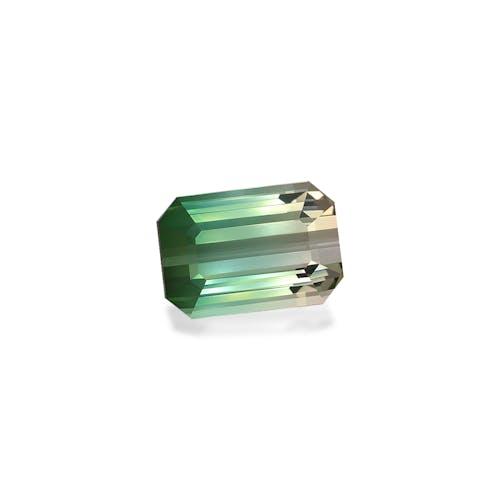 BT0084 1.jpg?auto=format&ixlib=php 3.3 - 30.13ct Bi Colour Tourmaline stone