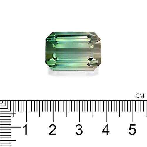 BT0084 2.jpg?auto=format&ixlib=php 3.3 - 30.13ct Bi Colour Tourmaline stone