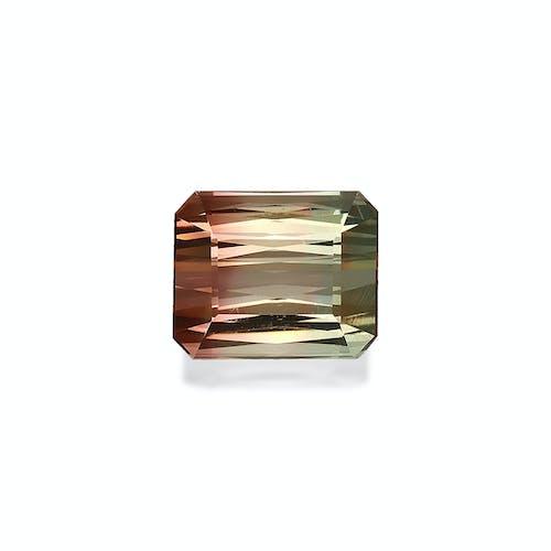 BT0103.jpg?auto=format&ixlib=php 3.3 - 13.54ct Bi Colour Tourmaline stone