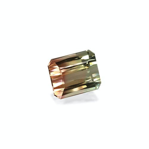 BT0103 1.jpg?auto=format&ixlib=php 3.3 - 13.54ct Bi Colour Tourmaline stone