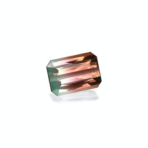 BT0122 1.jpg?auto=format&ixlib=php 3.3 - 6.56ct Bi Colour Tourmaline stone