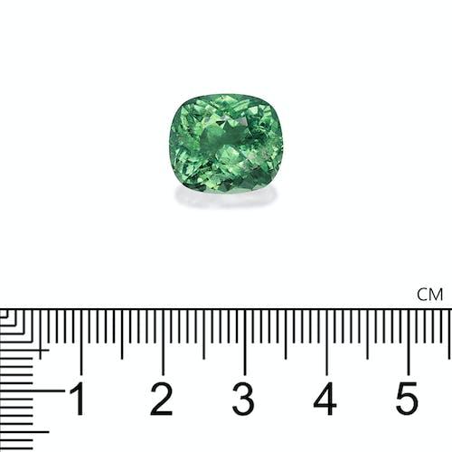PA0057 : 9.11ct Emerald Green Paraiba – 14x12mm