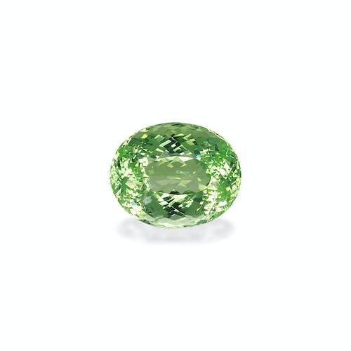 PA0125.jpg?auto=format&ixlib=php 3.3 - 13.38ct Lime Green Tourmaline stone