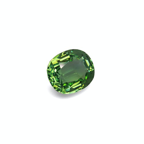 PA0253 1.jpg?auto=format&ixlib=php 3.3 - 37.26ct Green Paraiba stone 21x19mm