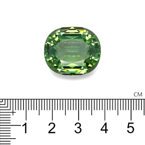 PA0253 2.jpg?auto=format&ixlib=php 3.3 - 37.26ct Green Paraiba stone 21x19mm