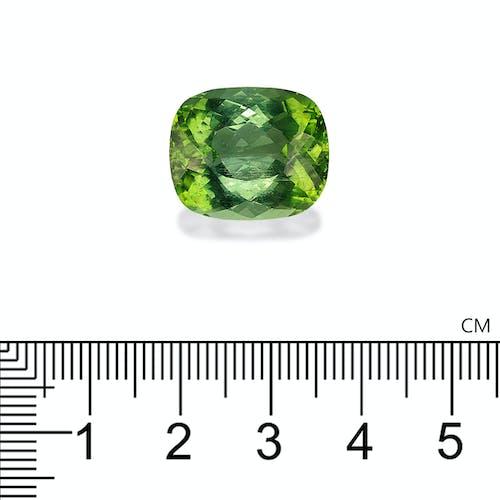 PA0258 2.jpg?auto=format&ixlib=php 3.3 - 19.56ct Green Paraiba stone