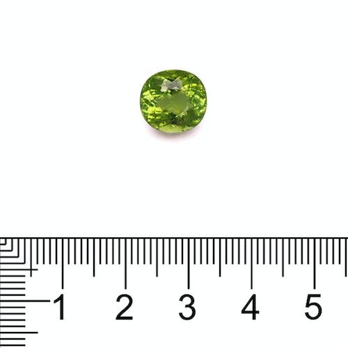 PA0264 : 4.96ct Paraiba Scale Image