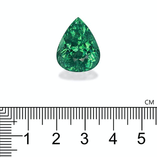 PA0268 2.jpg?auto=format&ixlib=php 3.3 - 18.09ct Neon Green Paraiba stone