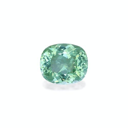 PA0631.jpg?auto=format&ixlib=php 3.3 - 9.61ct Seafoam Green Paraiba stone 14x12mm