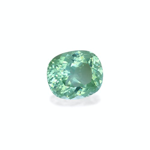 PA0631 1.jpg?auto=format&ixlib=php 3.3 - 9.61ct Seafoam Green Paraiba stone 14x12mm