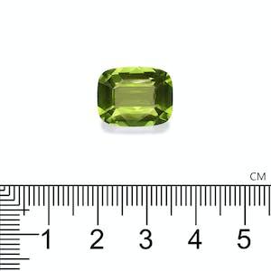 PD0050 : 8.85ct Peridot Scale Image