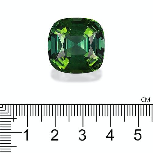 PG0015 2.jpg?auto=format&ixlib=php 3.3 - 48.53ct Green Tourmaline stone 23mm