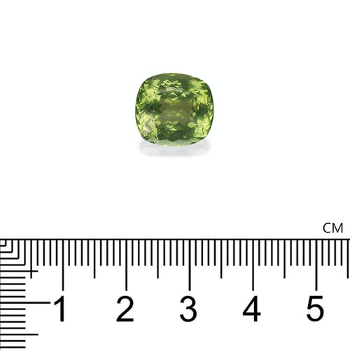 PG0025 : 7.64ct Cotton Green Tourmaline