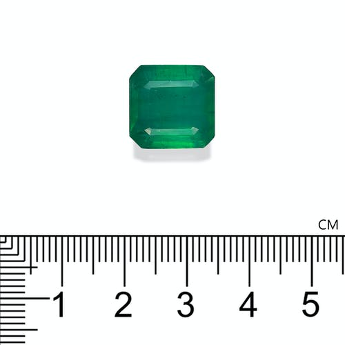 PG0044 2.jpg?auto=format&ixlib=php 3.3 - 10.70ct Zambian Emerald stone