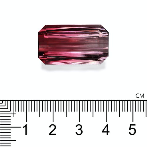 PT0441 : 40.45ct Bi Colour Tourmaline