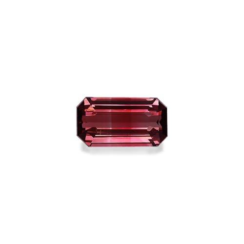 PT0523 : 8.63ct Bi Colour Tourmaline