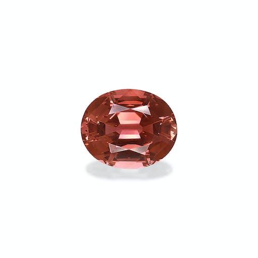PT0572 : 50.46ct Pink Tourmaline