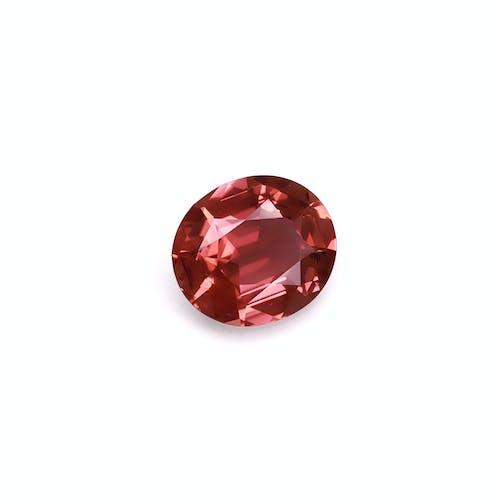 PT0691 : 14.62ct Pink Tourmaline Back Image