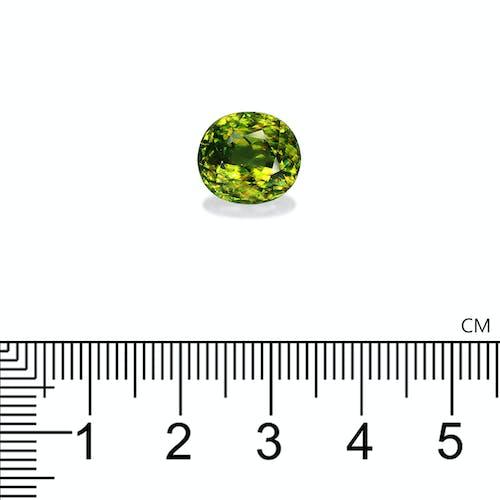 SH0332 2.jpg?auto=format&ixlib=php 3.3 - 7.73ct Green Sphene stone