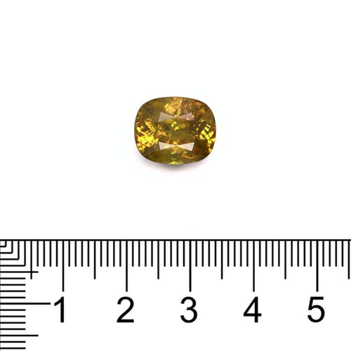 SH0382 : 6.35ct Sphene Scale Image
