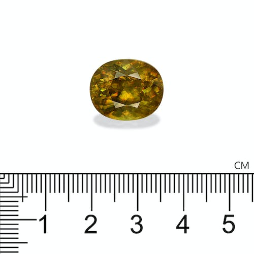 SH0383 : 14.66ct Sphene Scale Image