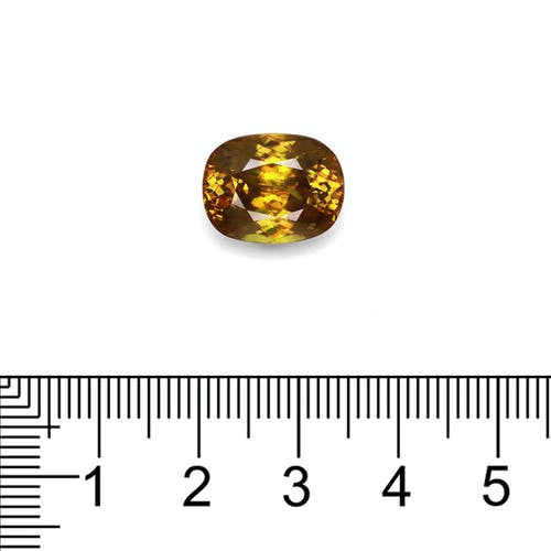 SH0385 : 8.89ct Sphene Scale Image