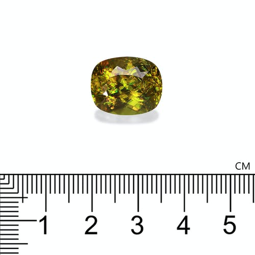 SH0466 2.jpg?auto=format&ixlib=php 3.3 - 14.73ct Lime Green Sphene stone