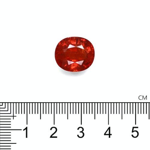 ST1652 : 13.03ct  Spessartite – 14x12mm