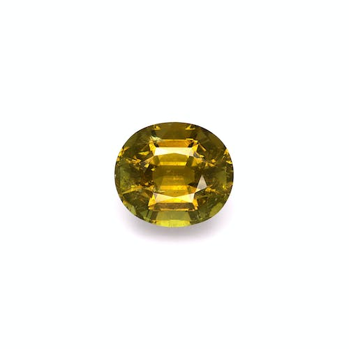 TG0139 : 15.19ct Forest Green Tourmaline – 16x14mm