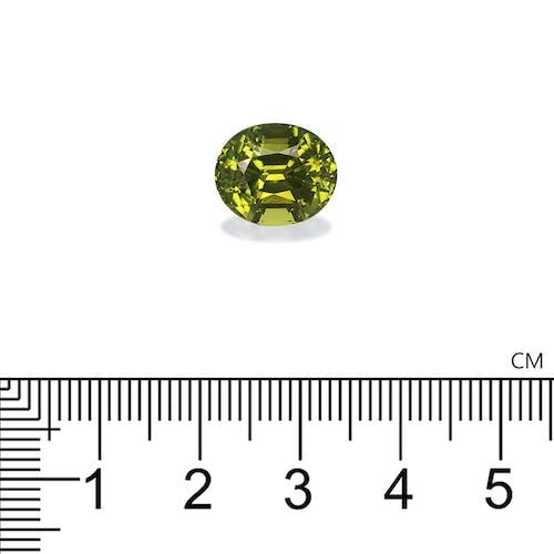TG0294 : 6.92ct Olive Green Tourmaline – 12x10mm