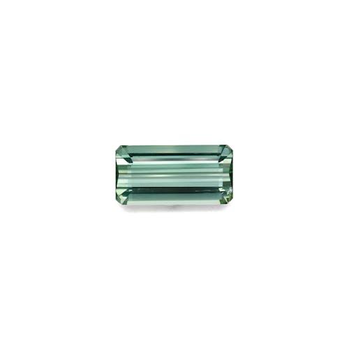 TG0298.jpg?auto=format&ixlib=php 3.3 - 12.78ct Seafoam Green Tourmaline stone