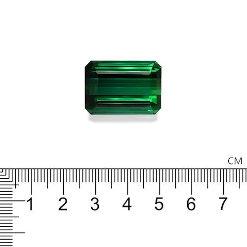 TG0306 : 59.71ct Vivid Green Tourmaline
