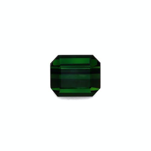 TG0319.jpg?auto=format&ixlib=php 3.3 - 14.55ct Basil Green Tourmaline stone