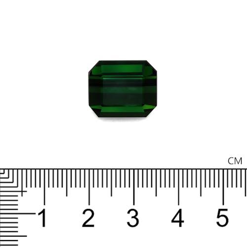 TG0319 2.jpg?auto=format&ixlib=php 3.3 - 14.55ct Basil Green Tourmaline stone
