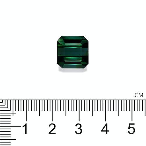 TG0320 : 14.15ct Green Tourmaline Scale Image