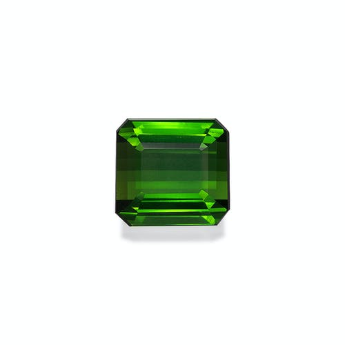 TG0346.jpg?auto=format&ixlib=php 3.3 - 17.12ct Vivid Green Tourmaline stone