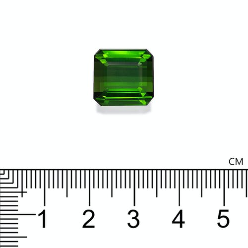 TG0346 2.jpg?auto=format&ixlib=php 3.3 - 17.12ct Vivid Green Tourmaline stone