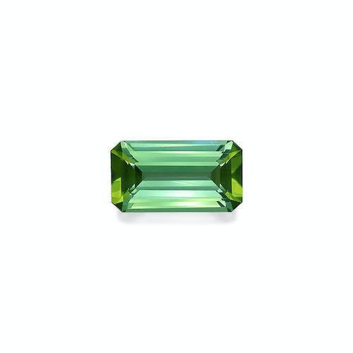 TG0347 : 9.03ct Pistachio Green Tourmaline