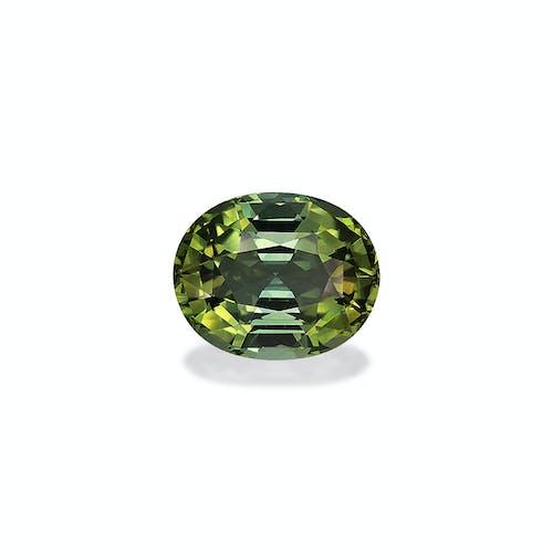 TG0352.jpg?auto=format&ixlib=php 3.3 - 9.71ct Lime Green Tourmaline stone