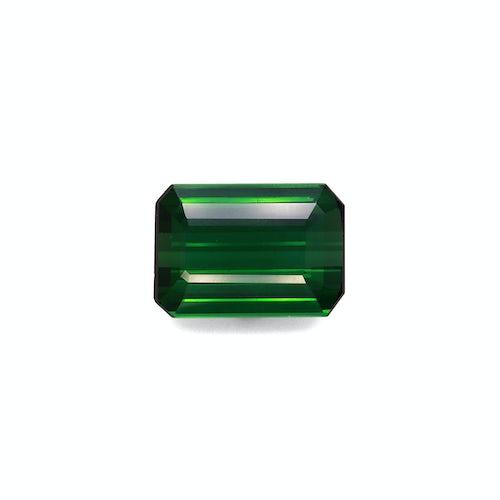 TG0356 : 16.58ct Green Tourmaline