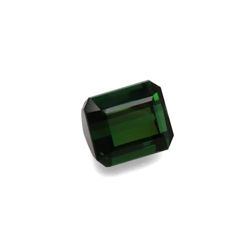 TG0357 1.jpg?auto=format&ixlib=php 3.3 - 16.23ct Basil Green Tourmaline stone 14x12mm