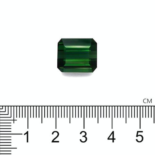 TG0357 2.jpg?auto=format&ixlib=php 3.3 - 16.23ct Basil Green Tourmaline stone 14x12mm
