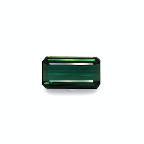 TG0367.jpg?auto=format&ixlib=php 3.3 - 15.09ct Basil Green Tourmaline stone